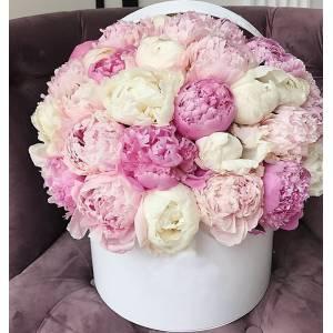 Коробка 35 розовых пионов микс с оформлением R777