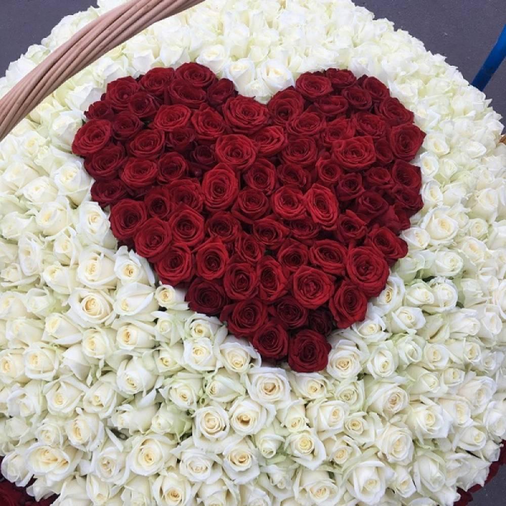 того, они самые красивые в мире букеты роз фотографии таблица фотостудий красноярска