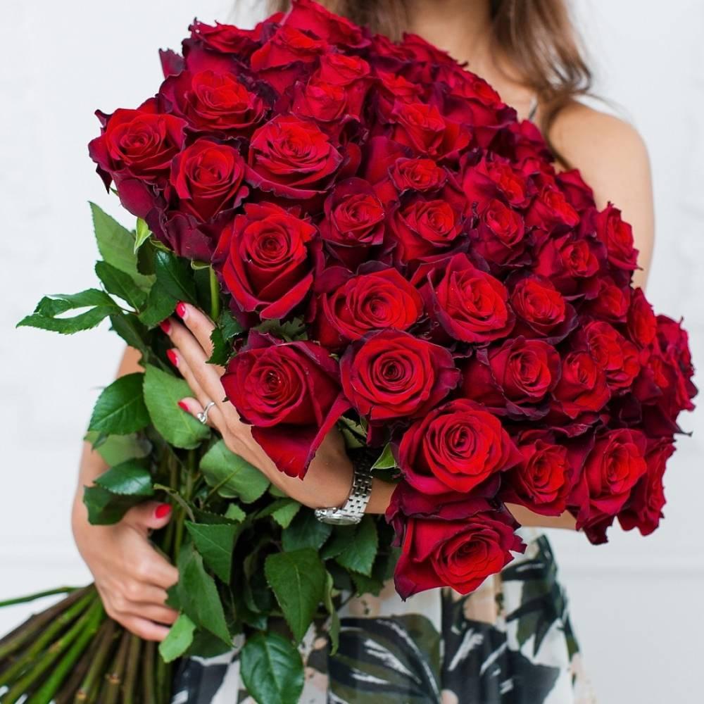 Красивые букеты алых роз держит девушка