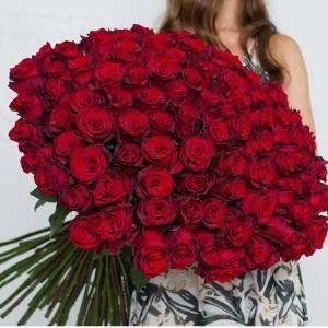 Большой букет 101 красная высокая роза R018